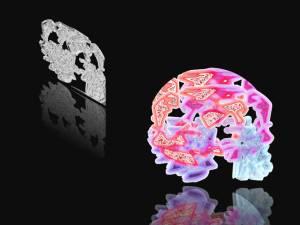 Computer_Targets_Human_Brain_S.Raza2 - Copy
